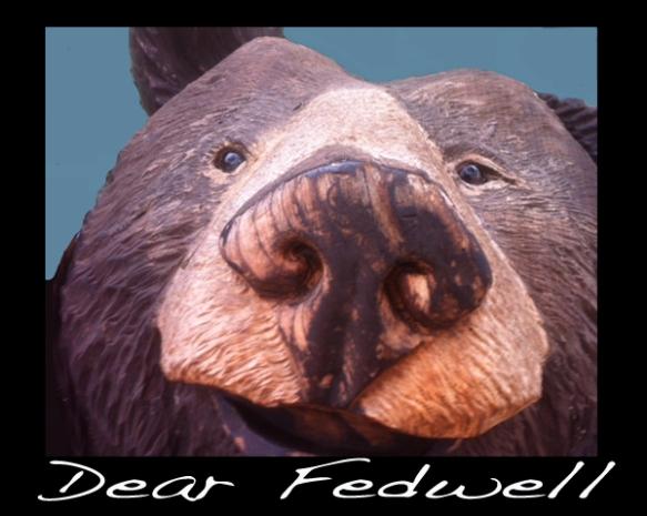Dear Fedwell 2014 # 1